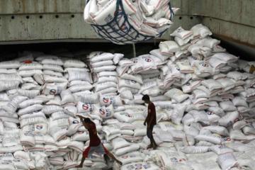 Philippines tìm nguồn nhập khẩu 300.000 tấn gạo