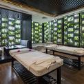 <p> Chính thiết kế đá ong kèm thảm thực vật xanh đem lại không gian thoải mái, thư giãn và riêng tư cho khách.</p>