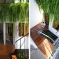 <p> Không gian xanh trong ngôi nhà với sự hài hòa ánh sáng tự nhiên.</p>
