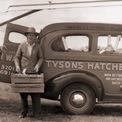 """<p class=""""Normal""""> Tyson Foods được hình thành từ thời kỳ Đại khủng hoảng.<span>Vào năm 1931, John W. Tyson cùng gia đình chuyển đến Springdale, bang Arkansas và bắt đầu công việc vận chuyển gà đến các địa điểm tiêu thụ thuộc khu vực Trung Tây. Trong những năm 1940, nhu cầu thịt gia cầm tăng cao, Tyson sau đó đã chuyển hướng sang chăn nuôi gà và nghiền thức ăn phục vụ cho các chủ trang trại gà khác trong khu vực. Hai công việc này sau đó được hợp nhất và đó là khởi đầu của Tyson Feed và Hatchery, Inc.</span>Ảnh:<em>Tyson Foods</em></p>"""