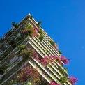 <p> Hoa giấy và nhiều loài cây nhiệt đới được trồng kín ban công, tạo nên vẻ tươi mát, nhẹ nhàng cho không gian.</p>