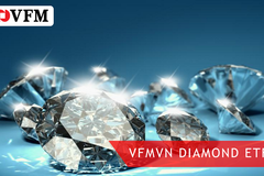 VN Diamond tăng quy mô lên 40 triệu chứng chỉ quỹ, gấp 4 lần thời điểm chào sàn