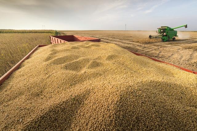 nhập khẩu đậu tương của Trung Quốc giảm 12% so với cùng kỳ năm trước do thời tiết xấu khiến việc giao hàng từ Brazil bị trì hoãn.