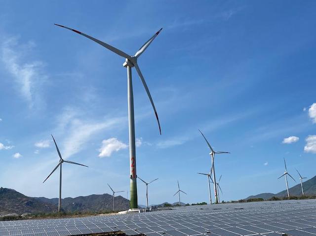 Nhiều nhà đầu tư đang ồ ạt xin làm dự án điện gió để hưởng ưu đãi giá mua điện cao.