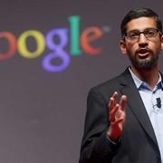Lý thuyết con gián - góc nhìn độc đáo của CEO Google