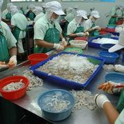 Xuất khẩu tôm sang Trung Quốc tăng lần đầu tiên trong năm 2020