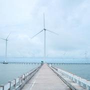 Bạc Liêu đề xuất bổ sung 470 MW điện gió vào quy hoạch