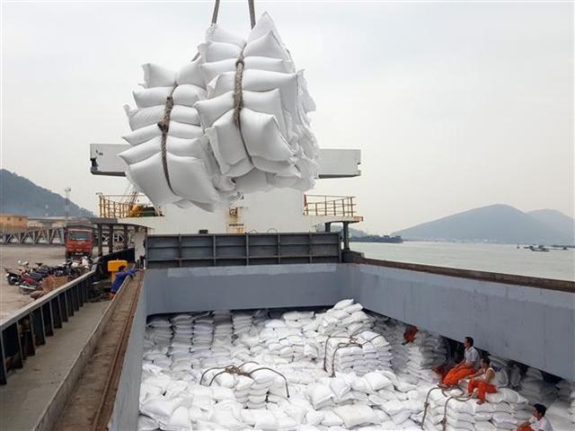 Đơn hàng tăng nhanh, giá gạo xuất khẩu của Việt Nam vẫn sát đỉnh 2 năm