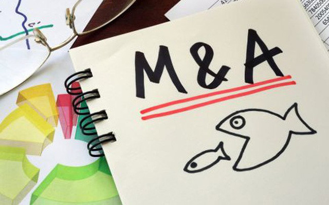 Doanh nghiệp nội bị doanh nghiệp ngoại thâu tóm: Cần kiểm soát một số lĩnh vực