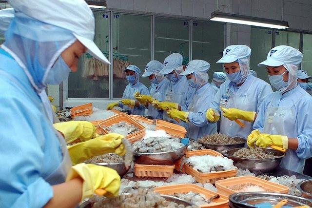Xuất khẩu tôm sang Nhật Bản vẫn tăng
