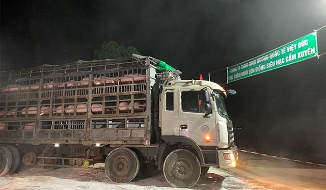 Nhập khẩu thịt lợn tăng 3 lần so với cùng kỳ 2019
