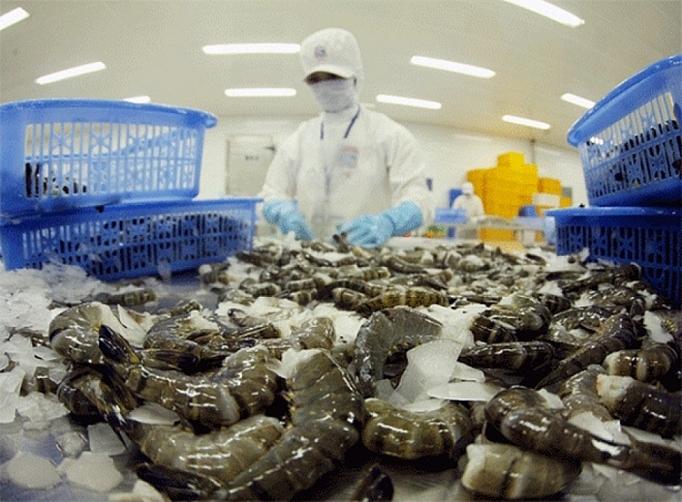 VASEP: Xuất khẩu tôm sang Canada vẫn tăng bất chấp dịch Covid-19