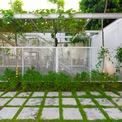 <p> Về điều kiện khí hậu vi mô, khu vườn cây bao quanh lớp học cũng tạo ra bầu không khí mát mẻ và yên tĩnh, đem lại cảnh quan xanh.</p>