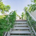 """<p class=""""Normal""""> Do đó, ngôi trường có 2 khu vườn, một với những cây lớn trên mặt đất và một với những dây leo trái cây ở trên, được kết nối bởi một hệ thống gồm 3 cầu thang sắt và lối đi trên cao, tạo thành một chu kỳ lưu thông liên tục trong vườn.</p>"""