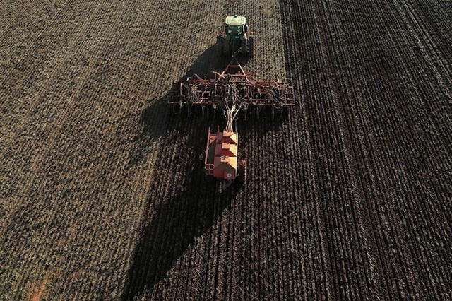 Làm đất để trồng lúa mạch tại Australia. Ảnh: Bloomberg