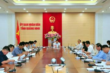 Vingroup muốn đầu tư tổ hợp công nghiệp phụ trợ ô tô hơn 3.400 tỷ đồng tại Quảng Ninh