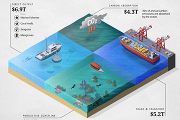 Con người đã làm gì với nền kinh tế đại dương trị giá 24.000 tỷ USD?