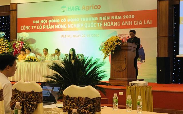 ĐHĐCĐ HAGL Agrico (HNG): Kỳ vọng nhiều vào dứa, có kế hoạch dùng 2.000 ha đất cho dự án điện mặt trời
