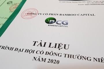 Họp ĐHĐCĐ Bamboo Capital: Kế hoạch lợi nhuận 2020 tăng 31%, lần đầu trả cổ tức bằng tiền tỷ lệ 8%