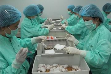 Việt Nam thử nghiệm thành công vắc-xin Covid-19 trên chuột