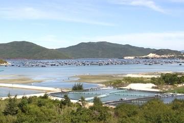 Khánh Hòa kiến nghị được xây dựng cơ chế phát triển khu kinh tế Vân Phong