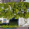 <p> Khu vườn rậm rạp nhìn từ trên cao.</p>