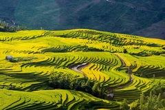 Xã Y Tý, Lào Cai được quy hoạch thành đô thị du lịch