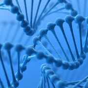 Trung Quốc phát triển công cụ chỉnh sửa gene mới