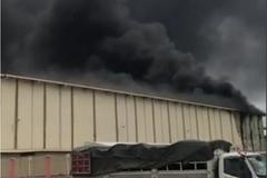 Cháy khu phế phẩm tại nhà máy Hoa Sen Hà Nam