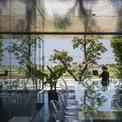 <p> Công trình là văn phòng làm việc của một đơn vị kiến trúc ở ngoại ô TP Huế.Văn phòng được xây dựng trên khu đất hình chữ nhật có diện tích 150 m2, nằm trong một khu dân cư mới cách xa trung tâm thành phố.</p>