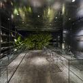 <p> Tầng 2 là không gian làm việc chính.Bàn ghế được làm từ vật liệu trong suốt với mục đích tạo ra cảm giác rộng rãi cho không gian. Đồng thời, hiệu ứng phản chiếu của cây cối, bầu trời trên bề mặt của những chiếc bàn kính này, hoặc sự phản chiếu tương tự từ vật liệu trần của tầng 2, sẽ tạo cảm giác gần gũi nhất với thiên nhiên.</p>