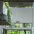 <p> Mọi không gian đều thoáng mát với màu xanh của cây cối và ánh nắng hòa quyện.</p>