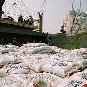 Hạn ngạch xuất khẩu gạo vào EU không quá 80.000 tấn mỗi năm