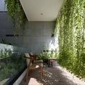 <p> Những tán cây rủ xuống giống búc rèm xanh, bảo vệ ngôi nhà khỏi bụi bặm và tiếng ồn từ con đường phía trước.</p>