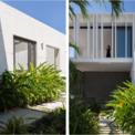 <p> Cây xanh có mặt ở mọi nơi quanh nhà nhằm giải thiểu sự nắng nóng gay gắt.</p>
