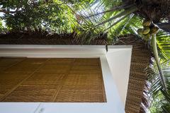 Ngôi nhà mái lá cọ, tường dệt gỗ ở Trà Vinh