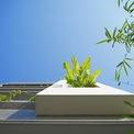 <p> Cây xanh được trồng trong nhà và cả ban công, giảm thiểu cảm giác nắng nóng oi bức của khí hậu Đà Nẵng.</p>