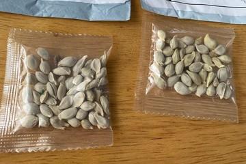 Mỹ cảnh báo không trồng 'hạt lạ' nghi xuất xứ Trung Quốc