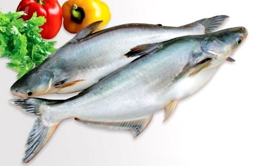 Lợi nhuận doanh nghiệp cá tra lao dốc