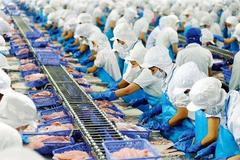 Vĩnh Hoàn chi gần 140 tỷ đồng mua cổ phiếu MWG, FPT và HPG