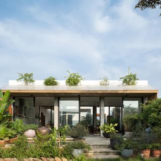 Ngôi nhà 200 m2 không có gì ngoài cây ở ngoại ô Hà Nội