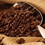 Giá cà phê sẽ tăng vào cuối năm 2020 dù vẫn dư cung