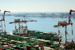 WTO: Các quốc gia đang thúc đẩy nhập khẩu với quy mô lớn