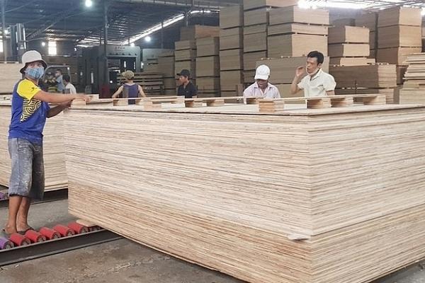 Ngăn chặn hành vi đưa gỗ Trung Quốc sang Việt Nam 'rửa' xuất xứ, bán sang Mỹ