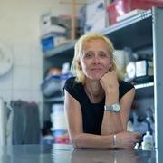 Những mẹ đơn thân 'vô hình' trong đại dịch Covid-19 tại Đức