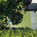 <p> Không gian xanh mướt với những thảm cỏ và cây dây leo nơi cổng vào ngôi nhà.</p>