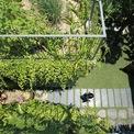 <p> Các kiến trúc sư cho rằng giải pháp đơn giản và hiệu quả nhất để tháo gỡ tình trạng ngập úng tại các đô thị là giữ nước trên lớp đất trồng cây ở mái nhà và cho thấm tự nhiên xuống lớp đất bên dưới.</p>