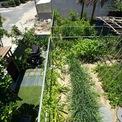 <p> Vì vậy, một khu vườn trên cao đã được hình thành, không chỉ giữ nước mà còngiúp cánh nhiệt cho ngôi nhà, hạn chế sử dụng năng lượng điện (như máy lạnh).</p>
