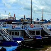 Quảng Ninh: Hơn 100 hộ kinh doanh tàu du lịch xin tạm dừng hoạt động