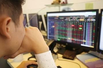Cổ phiếu dầu khí đua nhau tăng giá, VN-Index lên gần 4 điểm